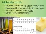 molecules of life7