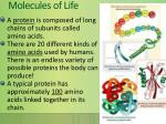 molecules of life8