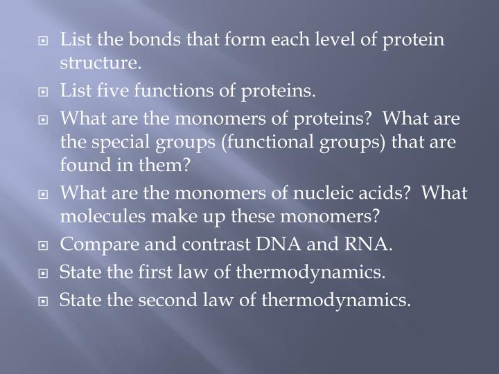 List the bonds that form each level of protein structure.