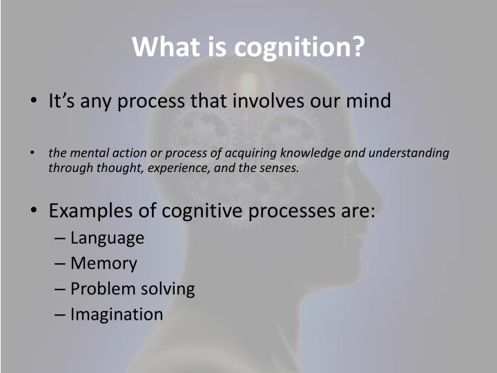 the extension of cognitive processes into the world Explicitly represented, yet some cognitive process functions properly only when that fact holds, then the part of the world constituting that fact becomes a literal part of the cognitive process.