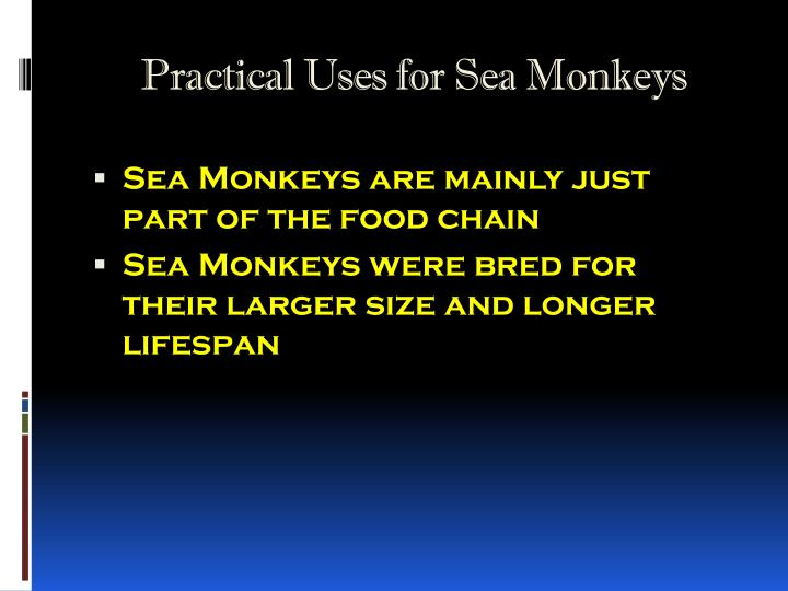 Practical uses for sea monkeys