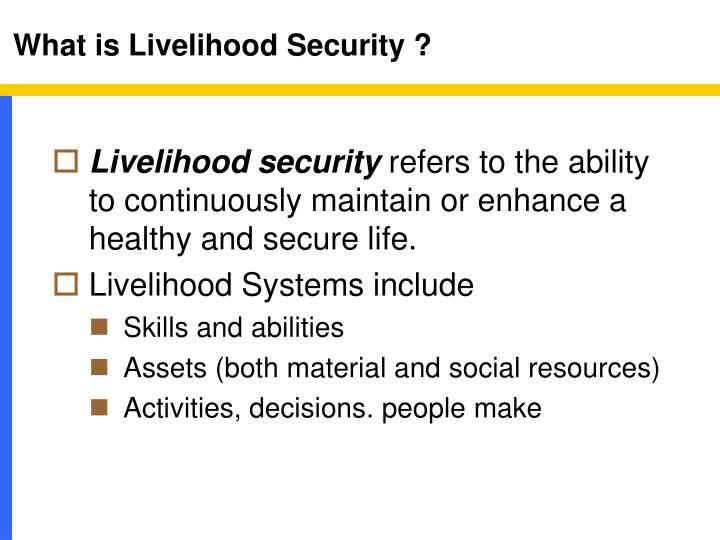 What is Livelihood Security ?
