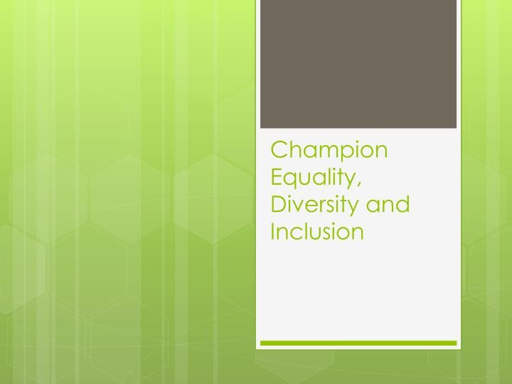 champion equality diversity and inclusion n.