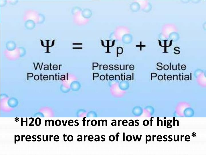 H20 moves from areas of high pressure to areas of low pressure