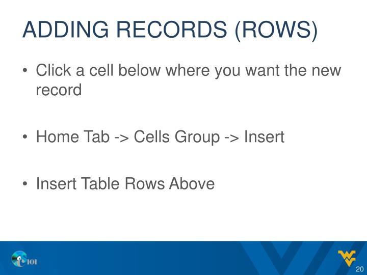 Adding records (rows)