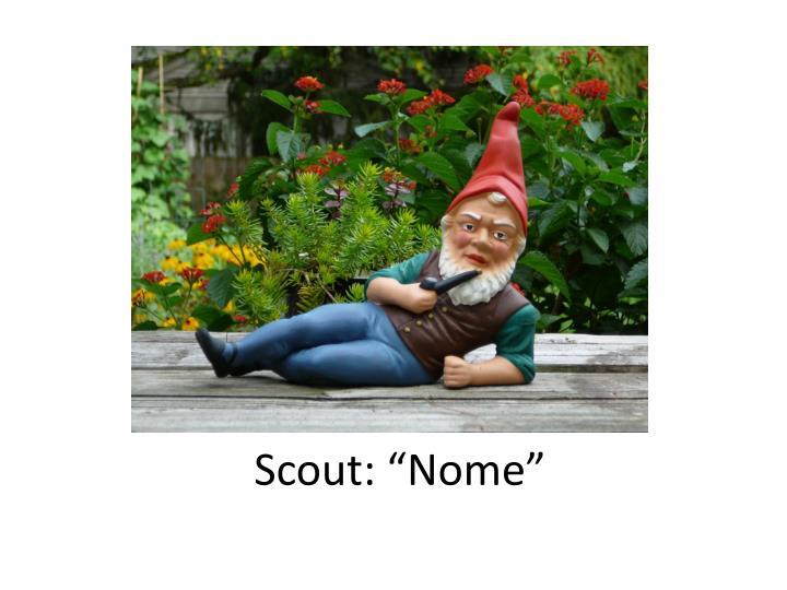 "Scout: ""Nome"""