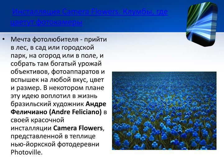 Инсталляция Camera Flowers. Клумбы, где цветут фотокамеры
