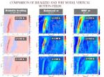 comparison of idealized and wrf model vertical motion fields