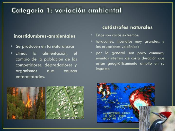 Categoría 1: variación ambiental