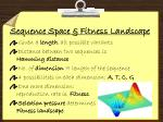 sequence space fitness landscape