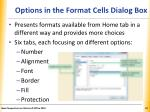 options in the format cells dialog box