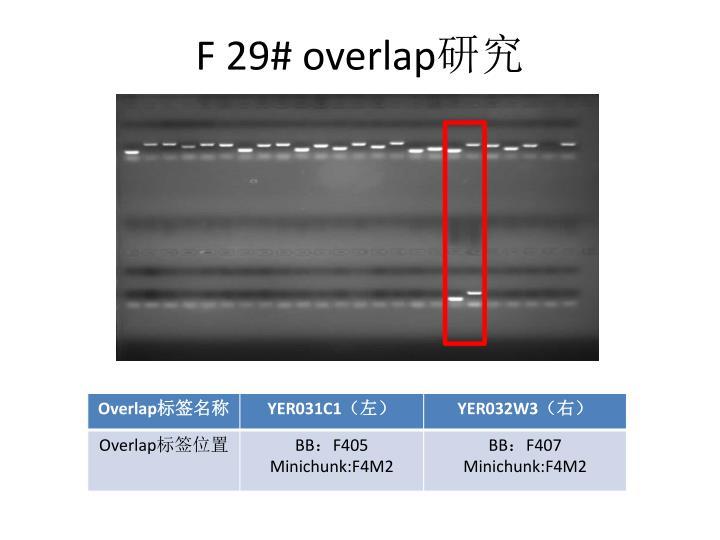 F 29# overlap