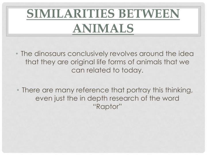 Similarities Between Animals