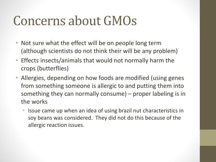 Concerns about GMOs