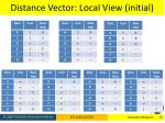 distance vector local view initial