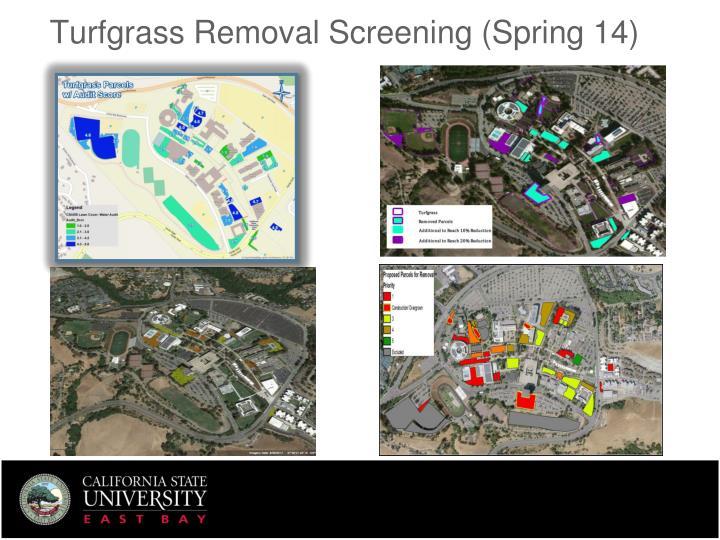 Turfgrass Removal Screening (Spring 14)