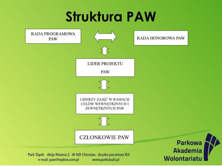 RADA PROGRAMOWA PAW