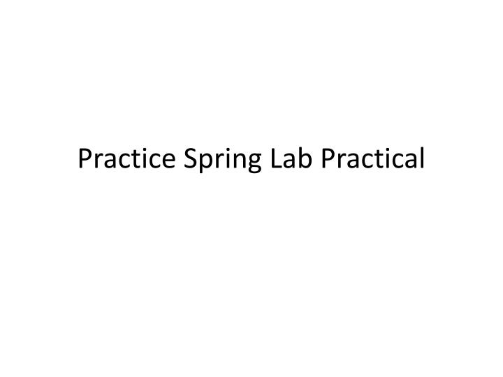 PPT - Practice Spring Lab Practical PowerPoint Presentation