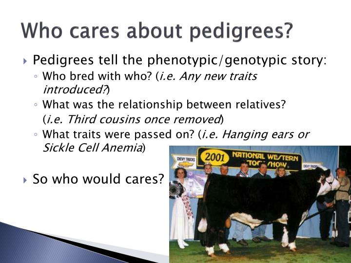 Who cares about pedigrees?