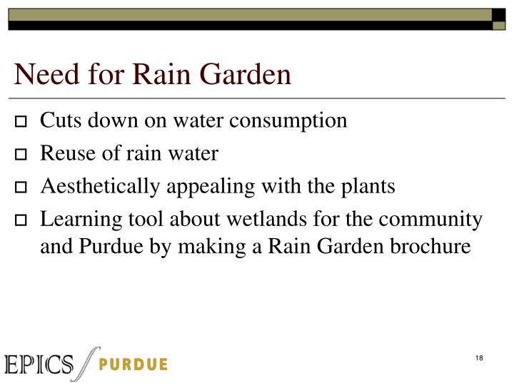 Need for Rain Garden