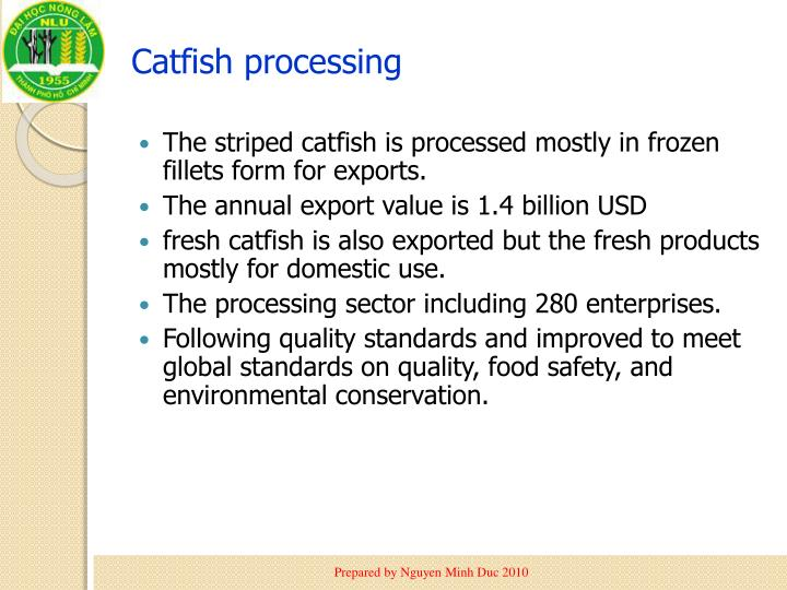catfish analysis Originating in south-east asia, c batrachus, the walking catfish, has been introduced throughout the world for the purposes of aquaculture and as an.