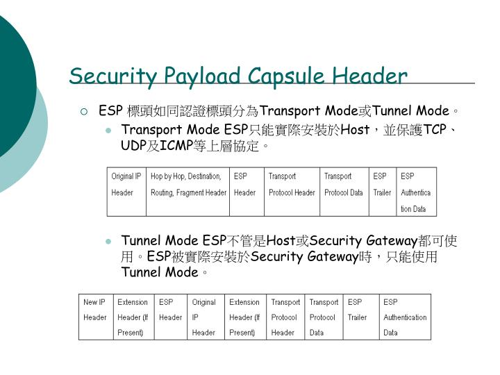 Security Payload Capsule Header