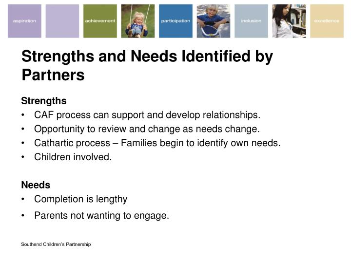 Strengths and Needs Identified by Partners