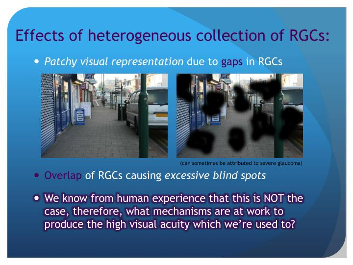 Effects of heterogeneous collection of RGCs: