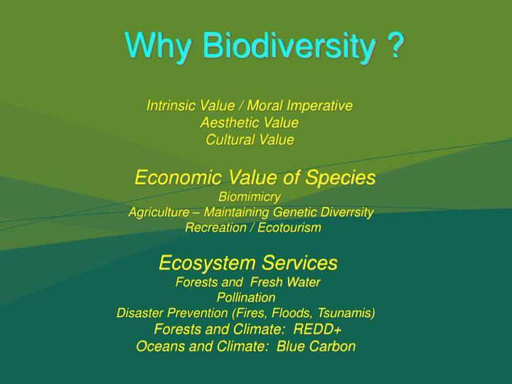 Why Biodiversity ?