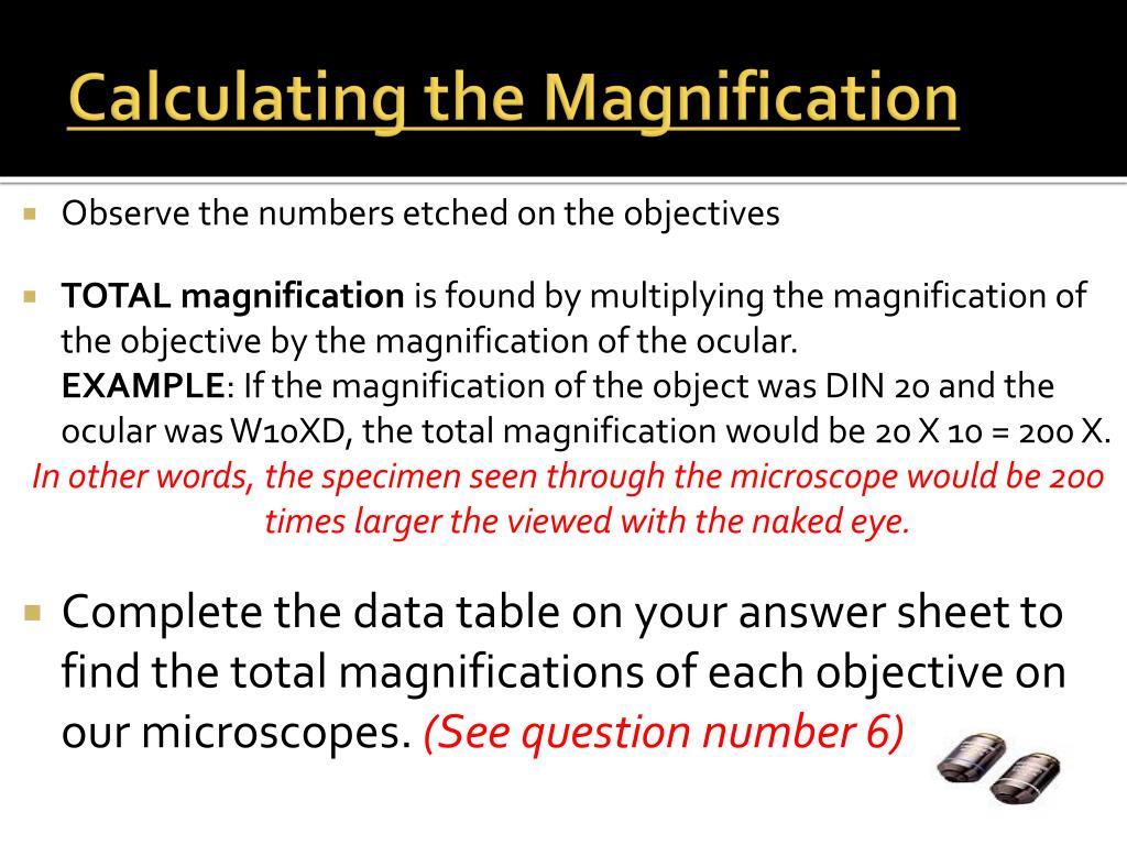 Microscope Mania Word Search Puzzle Answer Key - Micropedia