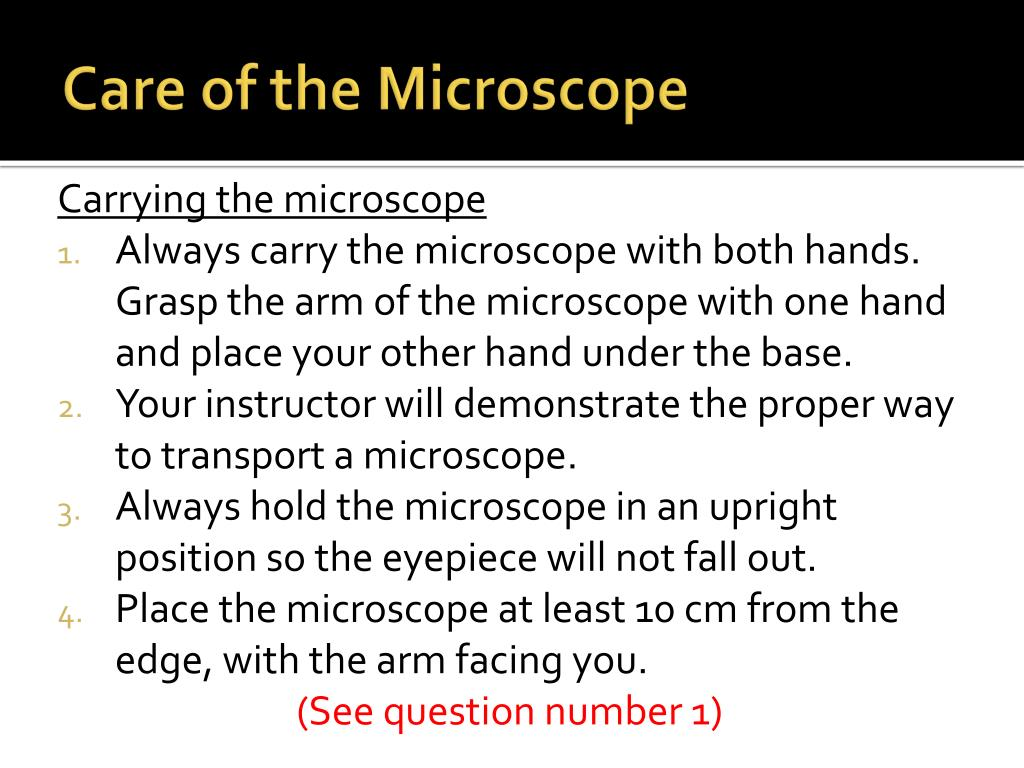 Microscope Mania Unit Review - Micropedia