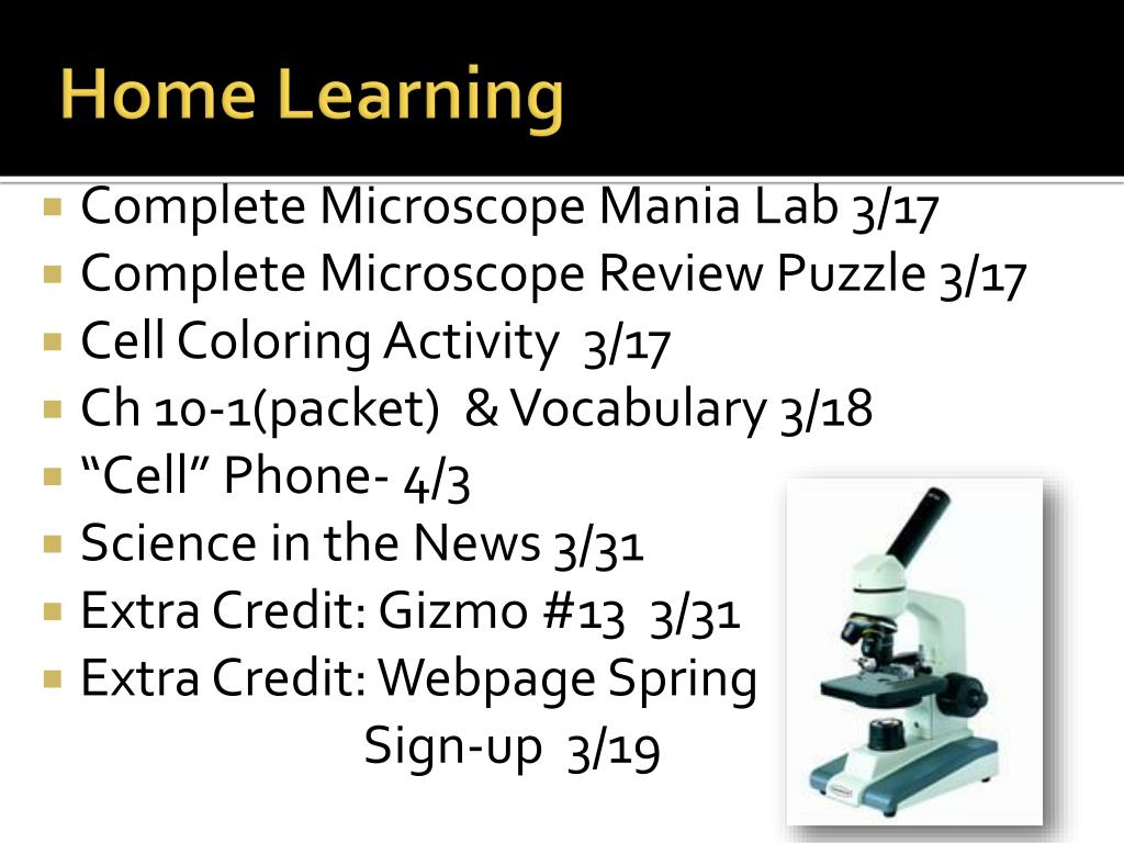 PPT - Microscope Mania PowerPoint Presentation, free ...