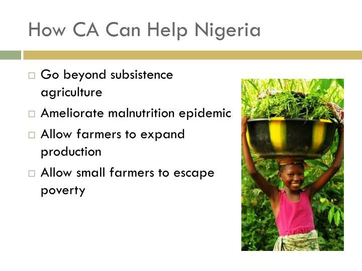 How CA Can Help Nigeria