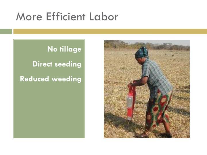 More Efficient Labor