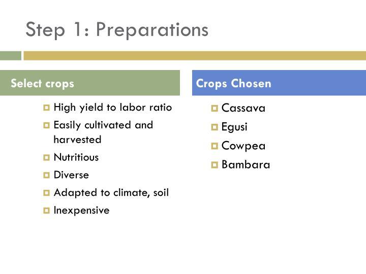 Step 1: Preparations