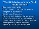 what child advocacy law field needs the most