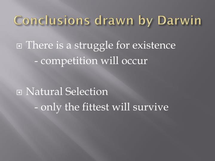 Conclusions drawn by Darwin