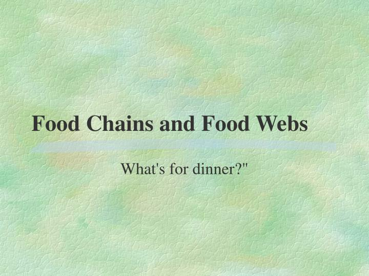 food chains and food webs n.