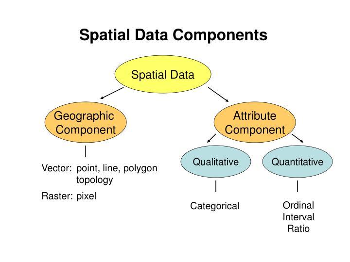Spatial Data Components