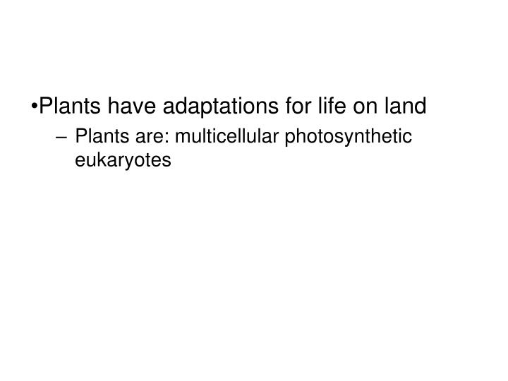 Plants have adaptations for life on land