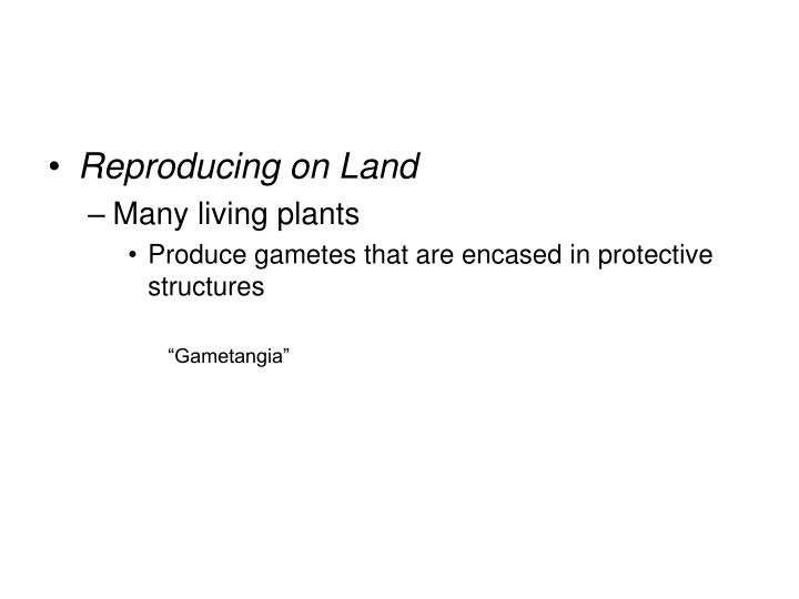 Reproducing on Land