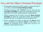 java and the object oriented paradigm