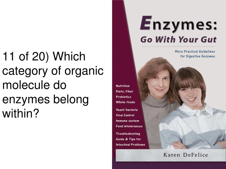 11 of 20) Which category of organic molecule do enzymes belong within?