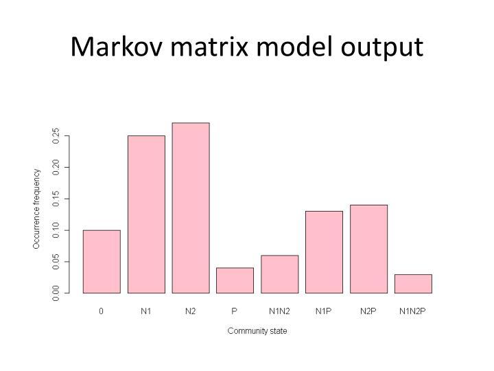 Markov matrix model output