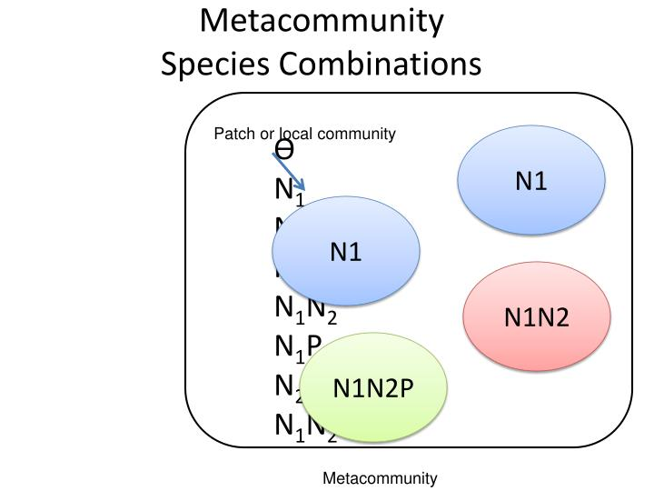 Metacommunity