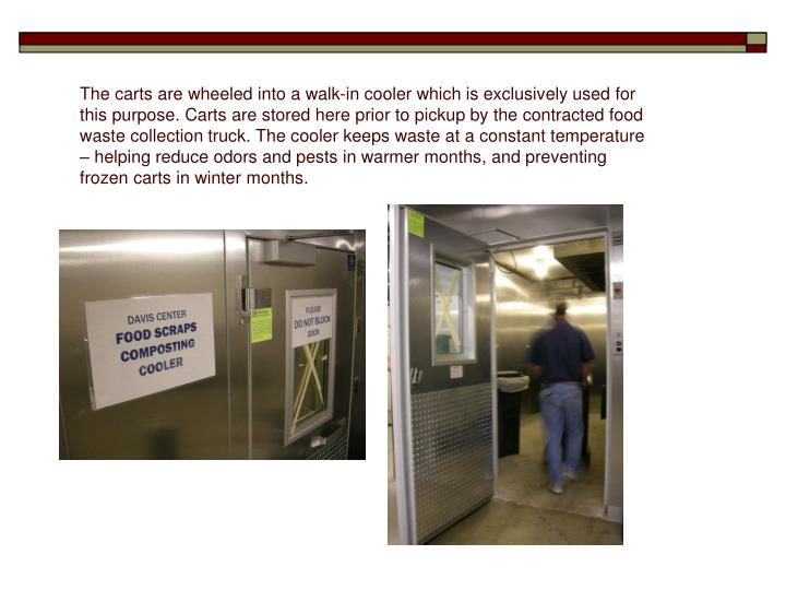 The carts are wheeled into a walk-in cooler which is exclusively used for this purpose. Carts are stored here prior to pickup by the contracted food waste collection truck. The cooler keeps waste at a constant temperature – helping reduce odors and pests in warmer months, and preventing frozen carts in winter months.