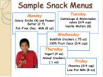 sample snack menus