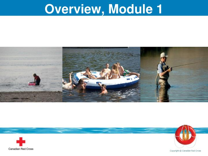 Overview, Module 1