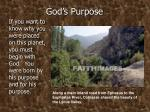 god s purpose