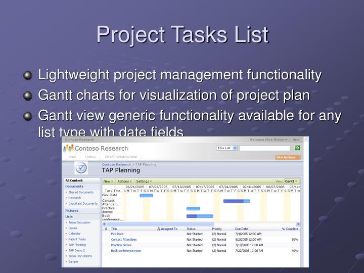 Project Tasks List